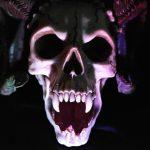 skull-535745_640
